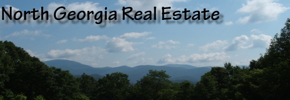 North Georgia Mountain Real Estate, Allene Anderson
